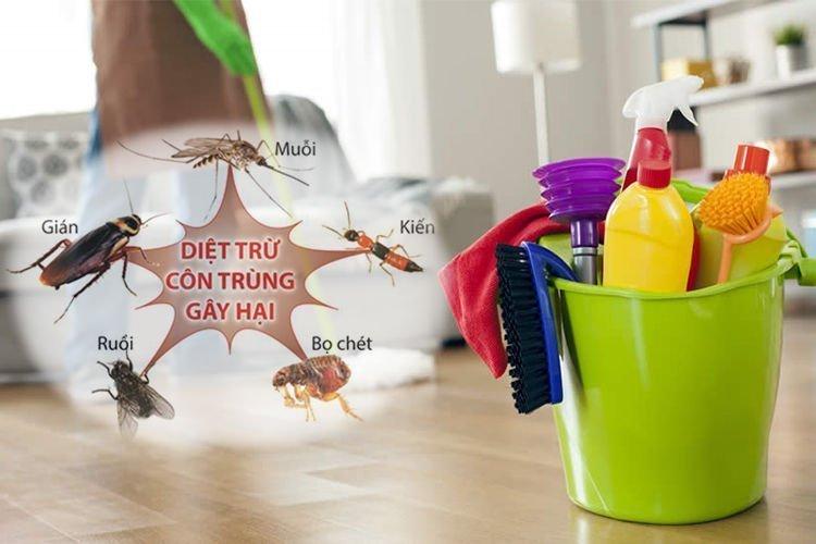 Cần thực hiện các biện pháp để khắc phục tình trạng côn trùng bay vào mũi