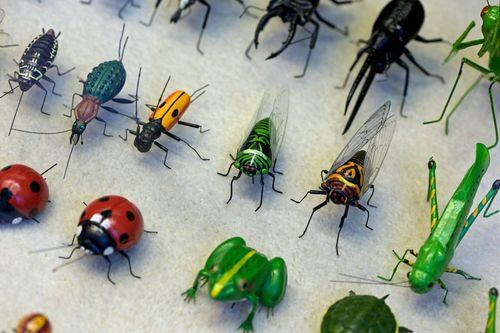 Cách xử lý khi bị côn trùng cắn