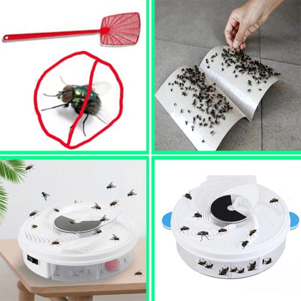 Biện pháp phòng chống tiêu diệt ruồi