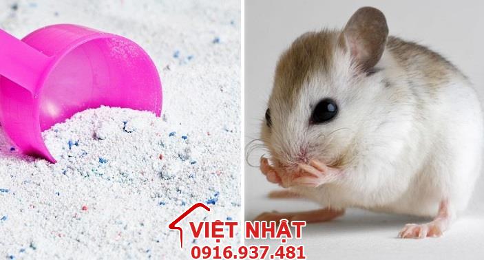 Đuổi chuột bằng bột giặt