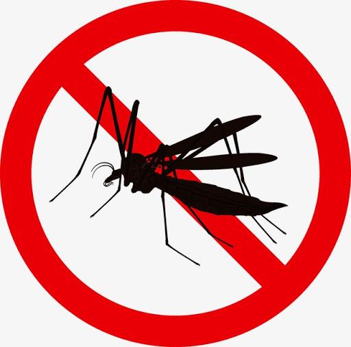 Phòng ngừa và tiêu diệt muỗi