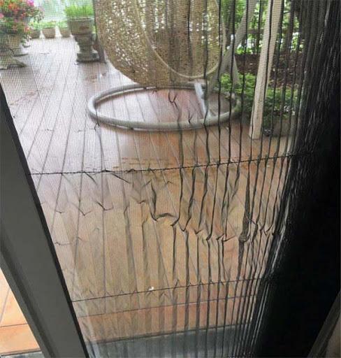 Thây lưới cửa lưới chống muỗi