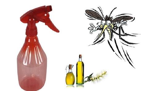 Dùng thuốc xịt muỗi đúng cách